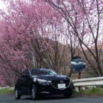 2017春 大洲Drive